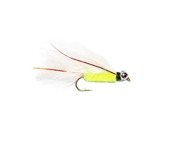 Red Flash Cats Whiskers